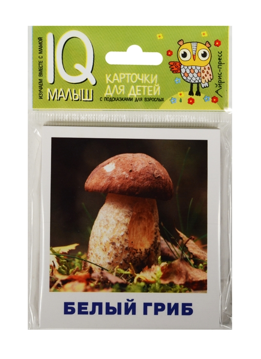 Тимофеева Т. Грибное лукошко Карточки для детей с подсказками для взрослых Изучаем вместе с мамой грибное меню