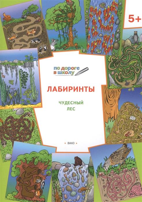 цены на Медов В. Лабиринты Чудесный лес  в интернет-магазинах