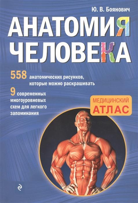 Боянович Ю. Анатомия человека Медицинский атлас цена