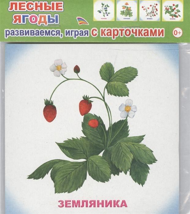 Обучающие карточки Лесные ягоды