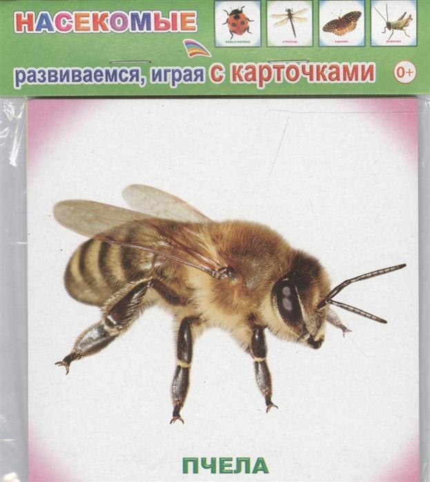 Обучающие карточки Насекомые глушкова н худ обучающие карточки насекомые