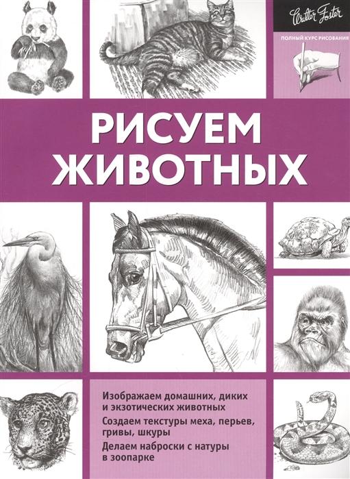 Чудова А. (ред.) Рисуем животных