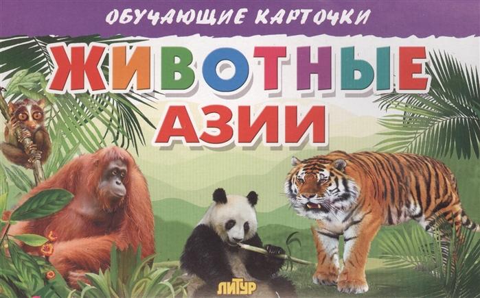 Глушкова Н. (худ.) Обучающие карточки Животные Азии