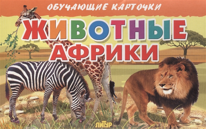 Глушкова Н. (худ.) Обучающие карточки Животные Африки