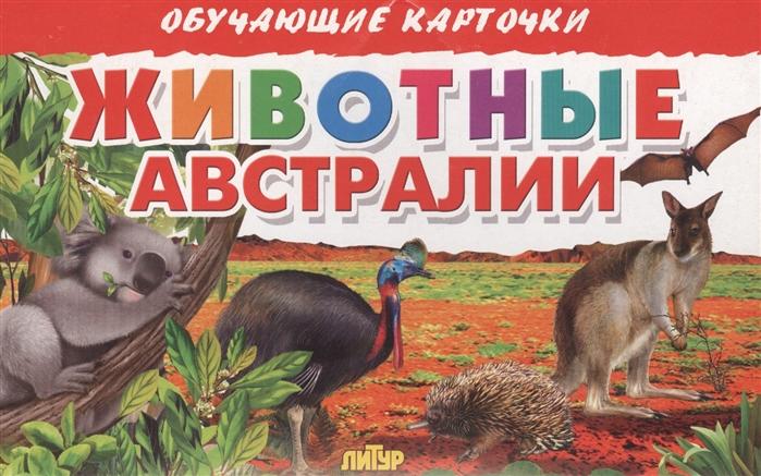 Глушкова Н. (худ.) Обучающие карточки Животные Австралии