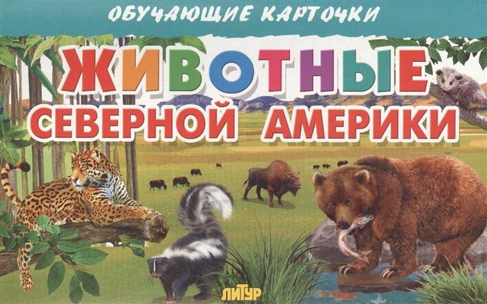 Глушкова Н. (худ.) Обучающие карточки Животные Северной Америки