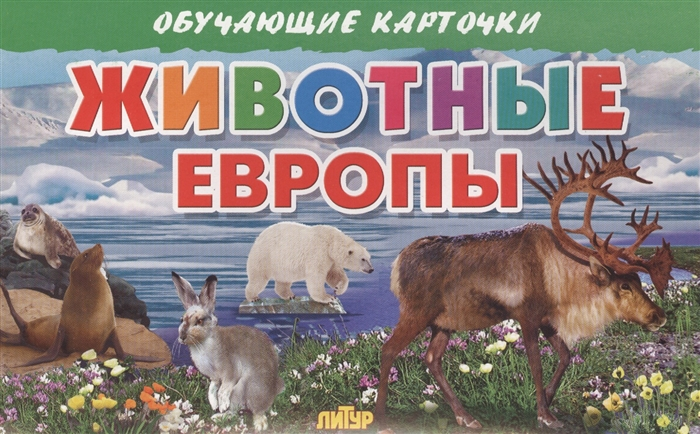 Глушкова Н. (худ.) Обучающие карточки Животные Европы