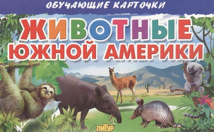 Глушкова Н. (худ.) Обучающие карточки Животные Южной Америки