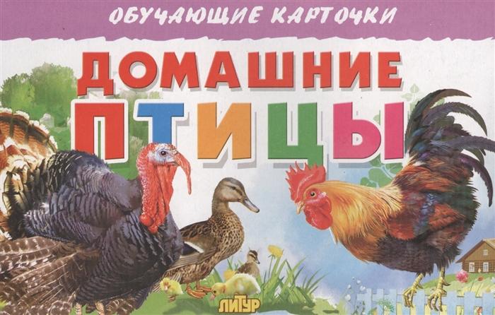 Глушкова Н. (худ.) Обучающие карточки Домашние птицы