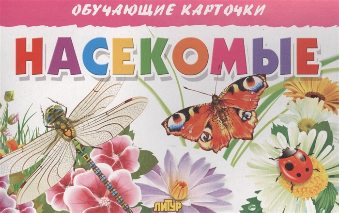 Фото - Глушкова Н. (худ.) Обучающие карточки Насекомые боголюбова о худ насекомые книжка игрушка