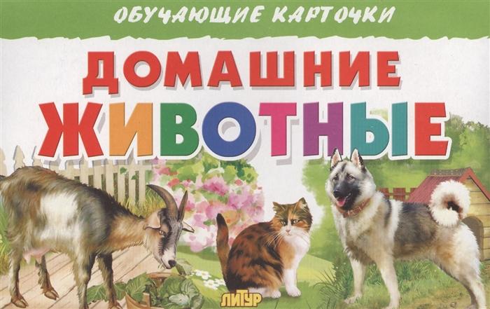 Глушкова Н. (худ.) Обучающие карточки Домашние животные