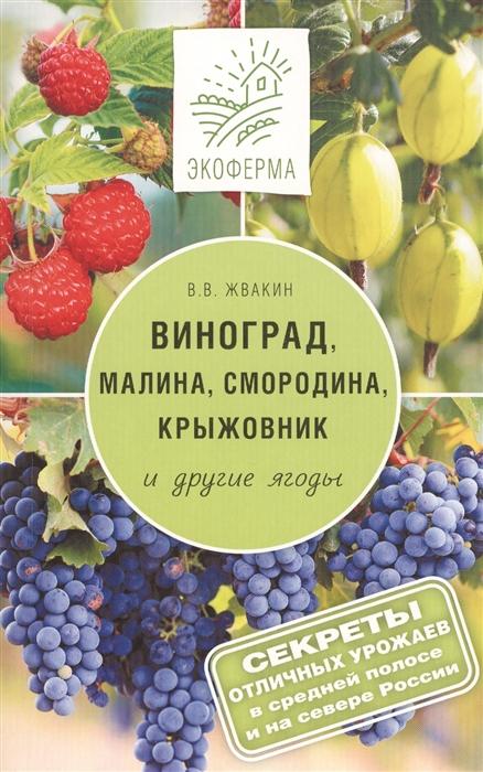 Виноград малина смородина крыжовник и другие ягоды Секреты отличных урожаев в средней полосе и на севере России