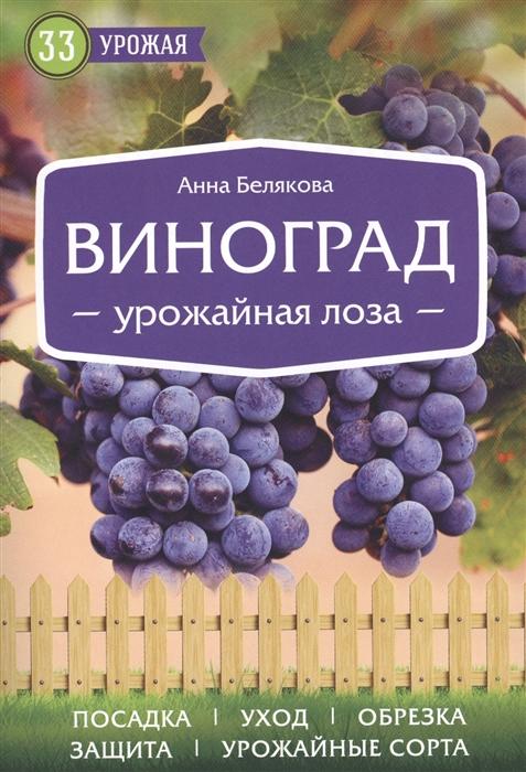 цены Белякова А. Виноград Урожайная лоза