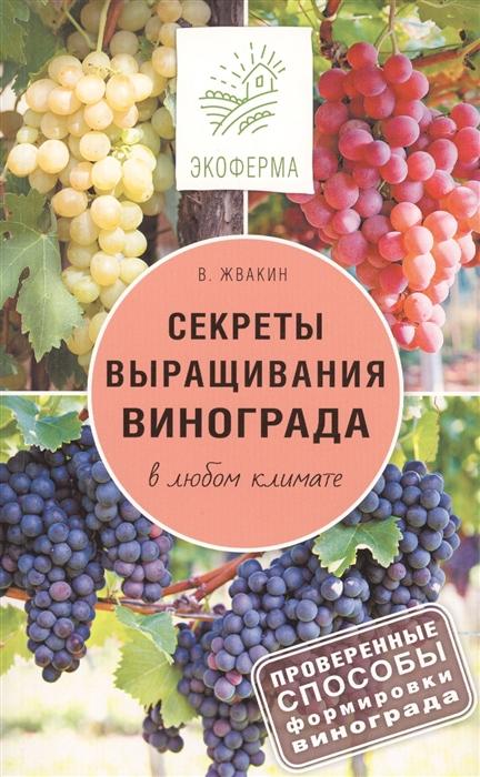 Секреты выращивания винограда в любом климате Проверенные способы формировки винограда