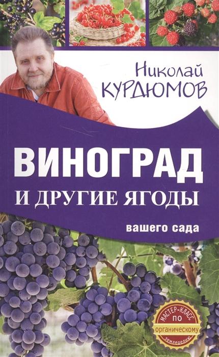 Курдюмов Н. Виноград и другие ягоды вашего сада курдюмов н как и от чего защитить виноград