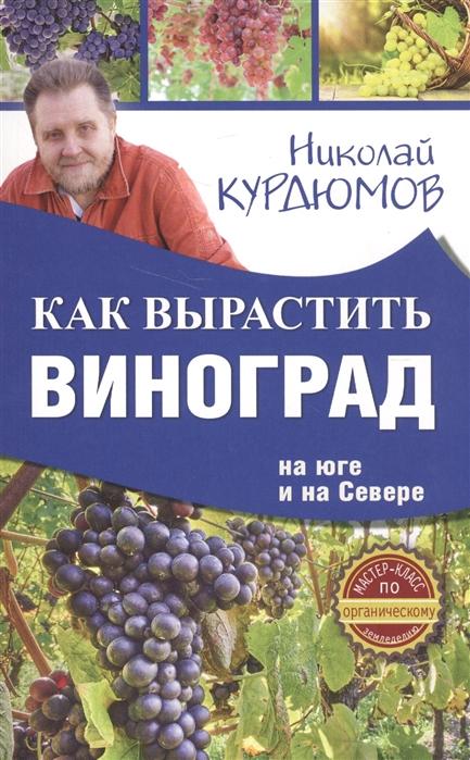 Курдюмов Н. Как вырастить виноград на Юге и на Севере курдюмов н как и от чего защитить виноград