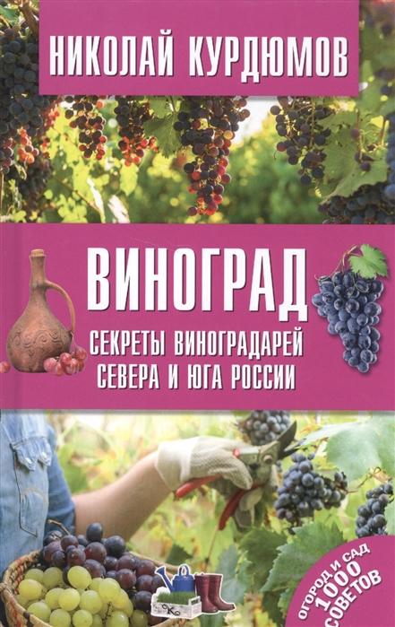 Виноград Секреты виноградарей севера и Юга России