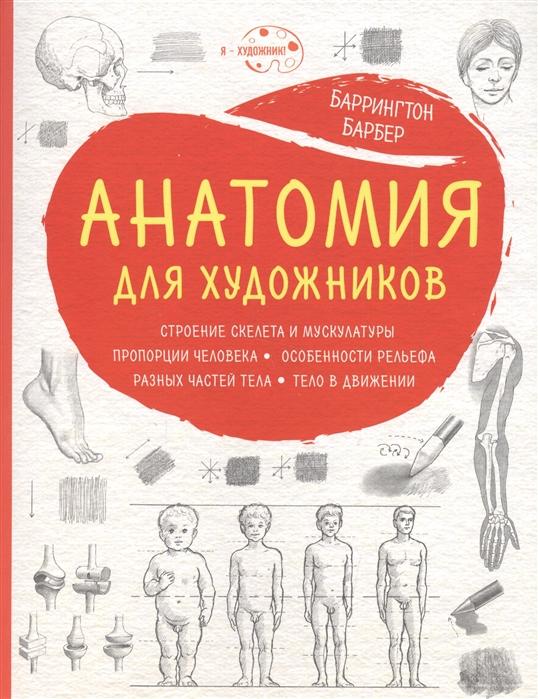 Анатомия для художников
