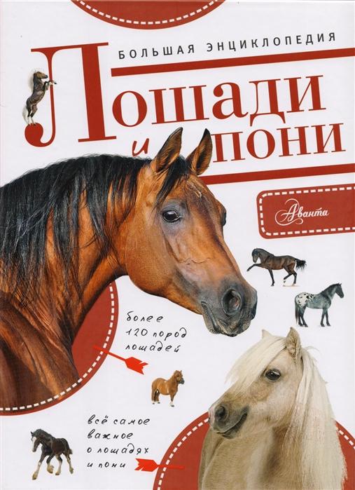 Белинг С. Большая энциклопедия Лошади и пони иванова м лошади и пони