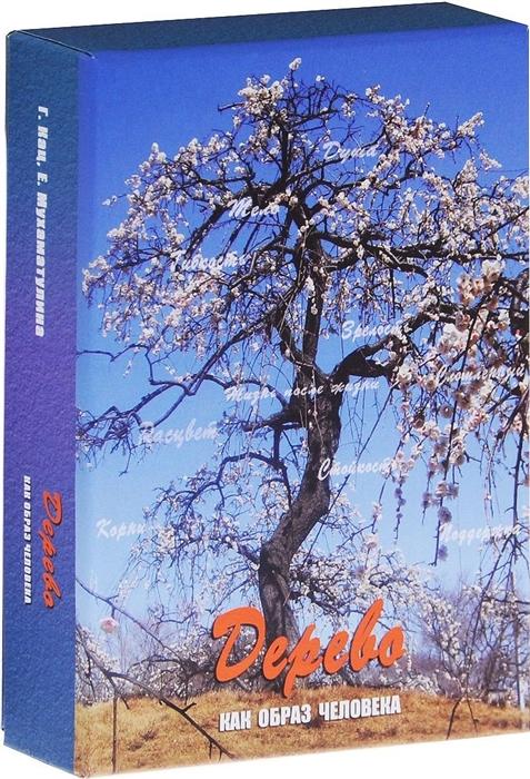 Кац Г., Мухаматулина Е. Дерево как образ человека Метафорические карты 80 карт 32 карточки