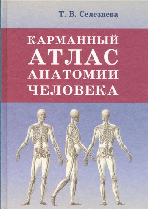 Селезнева Т. Карманный атлас анатомии человека мёллер т б атлас секционной анатомии человека костно мышечная система