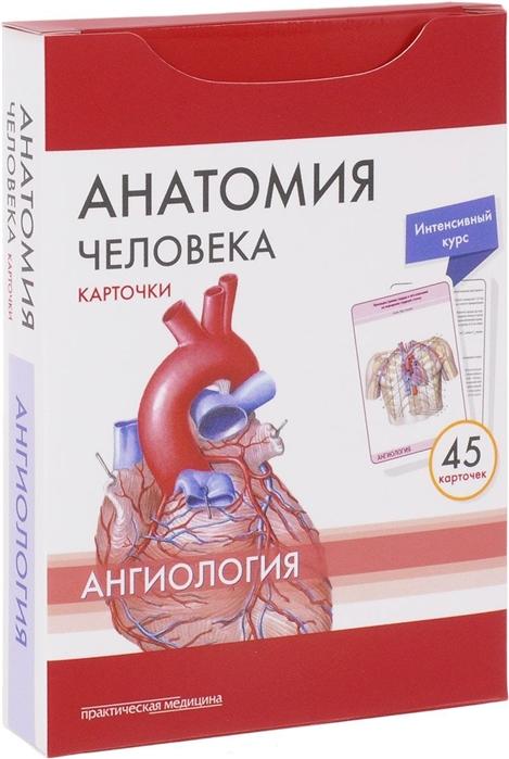 Сапин М., Николенко В., Тимофеева М. Анатомия человека Ангиология 45 карточек сапин м анатомия человека карточки спланхнология 49 карт коробка сапин