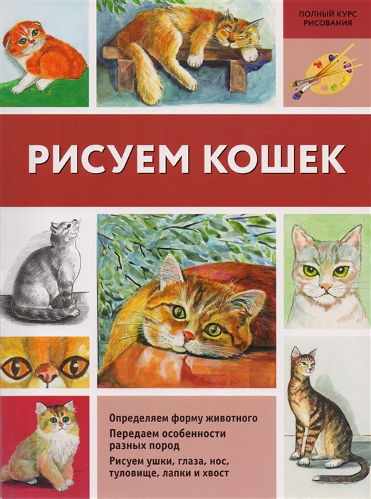 Щербакова Н. Рисуем кошек