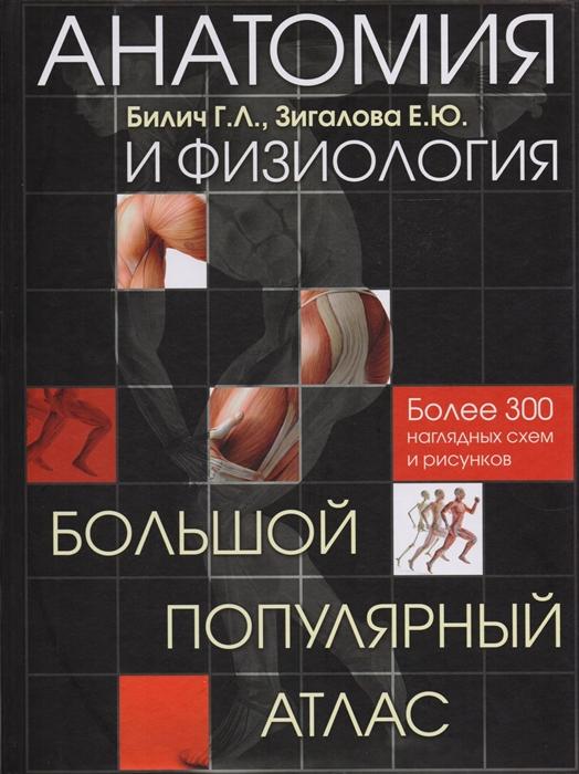 Билич Г., Зигалова Е. Анатомия и физиология Большой популярный атлас Более 300 наглядных схем и рисунков