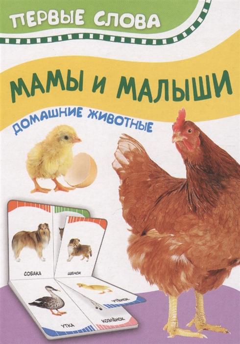 цены на Котятова Н. (ред.) Мамы и малыши Домашние животные Первые слова  в интернет-магазинах