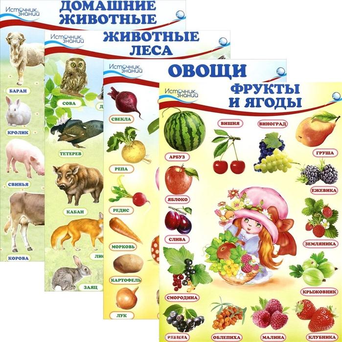 Комплект познавательных мини-плакатов Окружающий мир Животные и растения