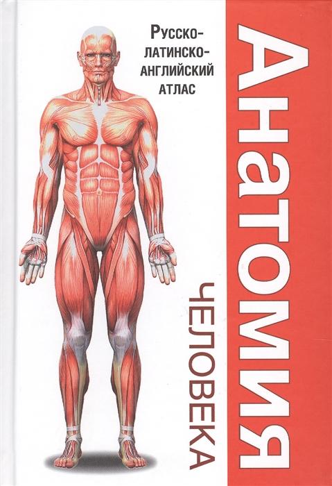 Анатомия человека Русско-латинско-английский атлас