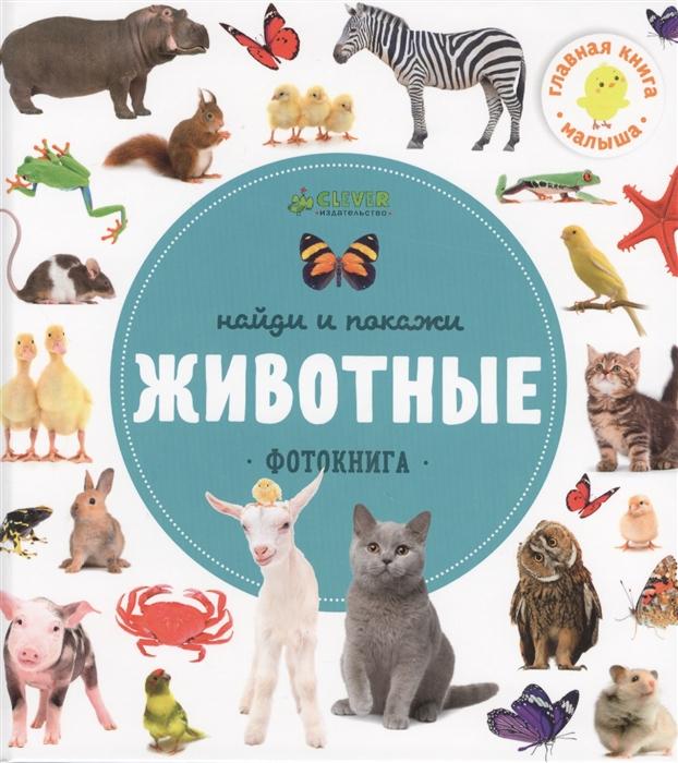 купить Измайлова Е. (гл. ред.) Найди и покажи Животные Фотокнига по цене 221 рублей