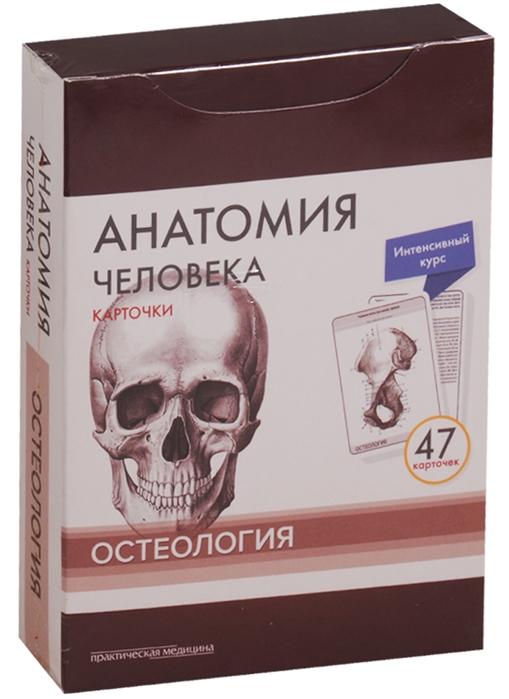 Сапин М., Николенко В., Тимофеева М. Анатомия человека Карточки Остеология Интенсивный курс 47 карточек