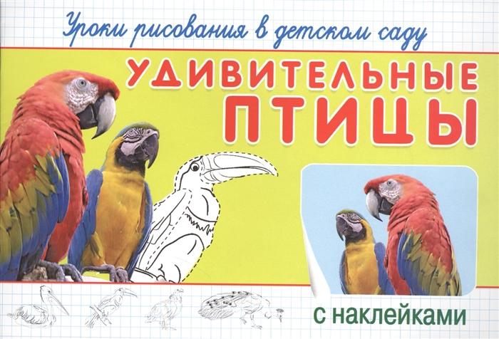 цена на Новосельцева А. (ред.) Удивительные птицы Уроки рисования в детском саду с наклейками