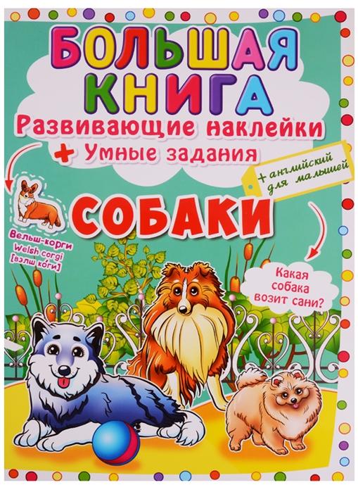 Фото - Корнева Л. (худ.) Большая книга Развивающие наклейки Умные задания Собаки английский для малышей английский для малышей буква за буквой наклейки