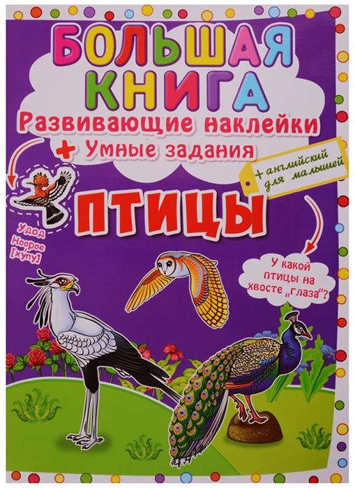 цена на Корнева Л. (худ.) Большая книга Развивающие наклейки Умные задания Птицы английский для малышей