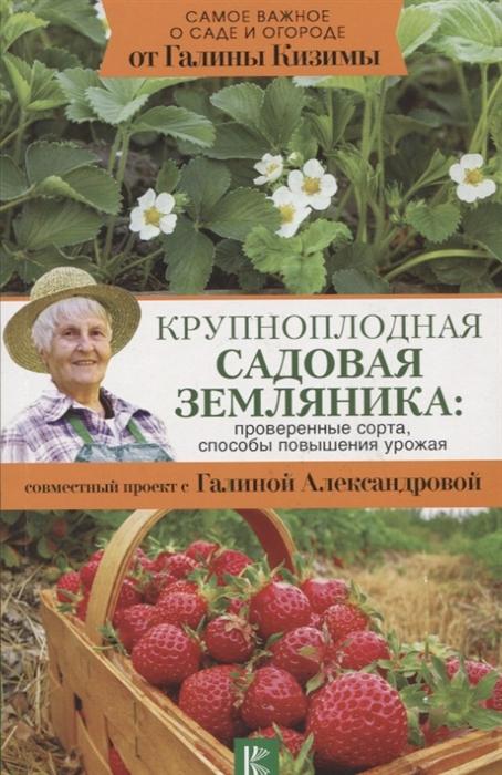 Кизима Г., Александрова Г. Крупноплодная садовая земляника проверенные сорта способы повышения урожая все цены