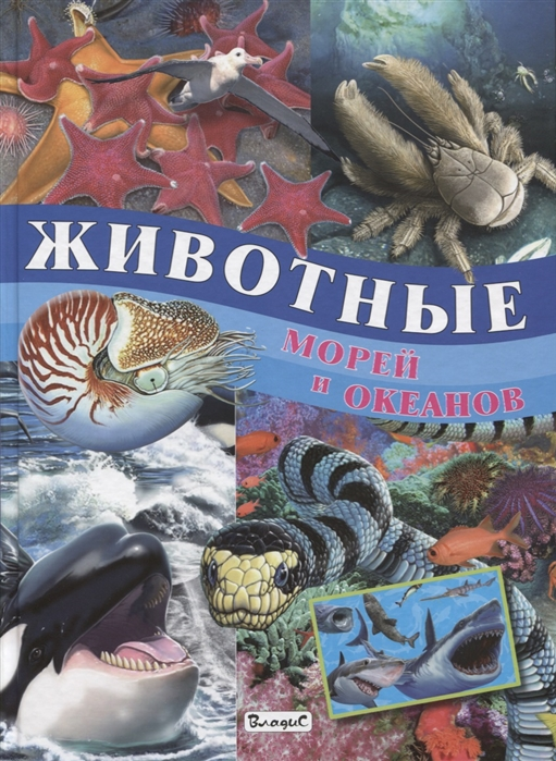 Родригес К. Животные морей и океанов животные морей и океанов книжка гармошка
