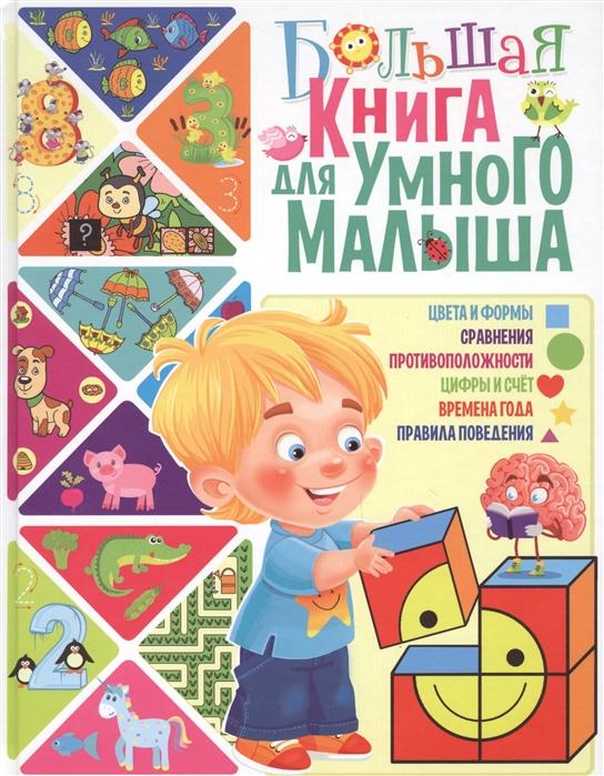 Скиба Т. (авт.-сост.) Большая книга для умного малыша скиба т авт сост лучшие загадки для девочек