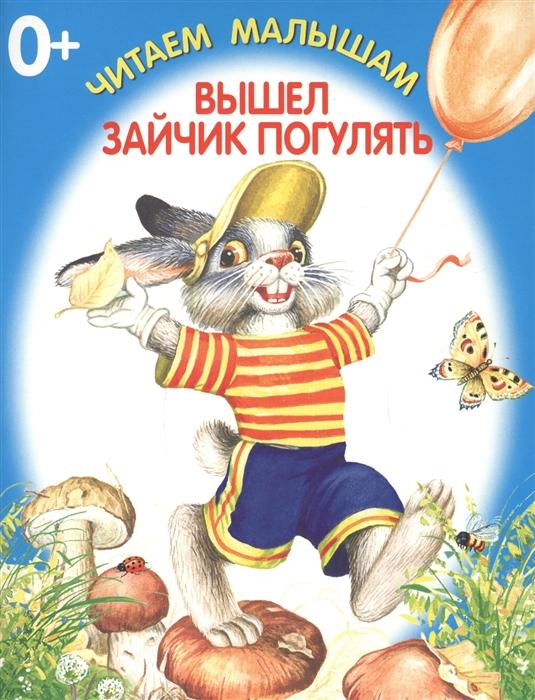 Купить Вышел зайчик погулять, Искателькнига, Книги - игрушки