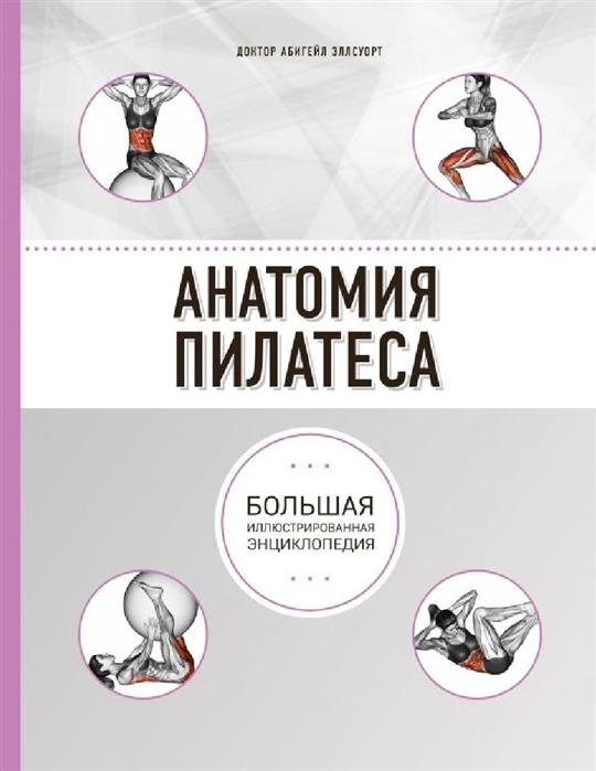 Эллсуорт А. Анатомия пилатеса Большая иллюстрированная энциклопедия