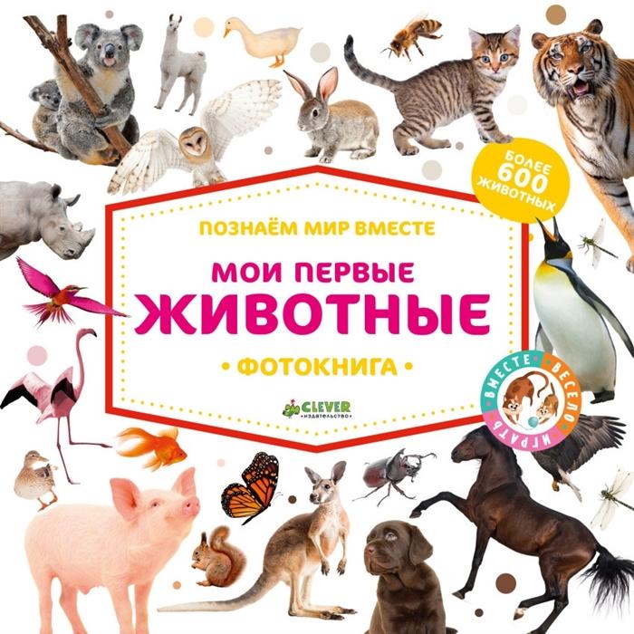 купить Измайлова Е. (ред.) Мои первые животные Фотокнига Более 600 животные по цене 972 рублей