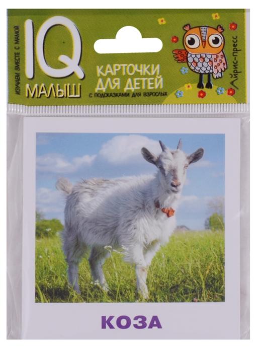 Ходюшина Н. Домашние животные Карточки для детей с подсказками для взрослых