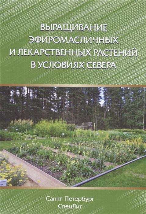 Выращивание эфиромасличных и лекарственных растений в условиях севера