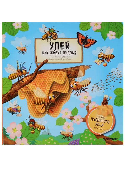 Петрикова Ж. Улей Как живут пчелы Модель пчелиного улья внутри