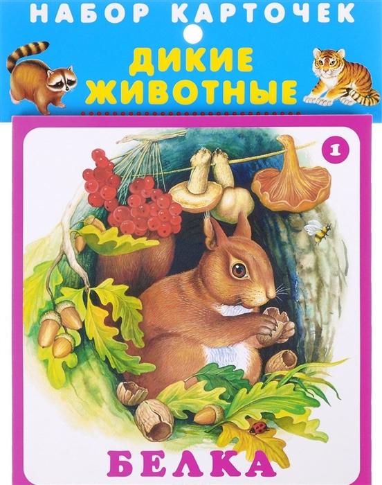 все цены на Цыганков И. (худ.) Набор карточек Дикие животные онлайн