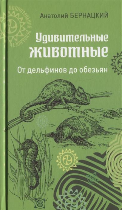 Бернацкий А. Удивительные животные От дельфинов до обезьян цены
