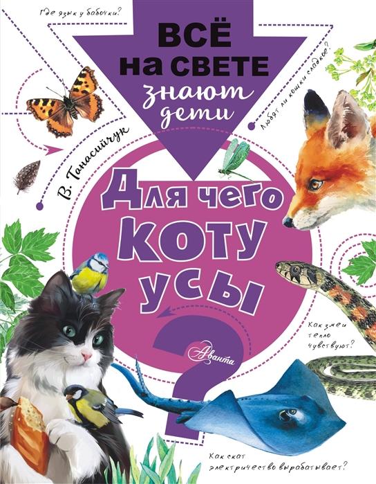 Танасийчук В. Для чего коту усы