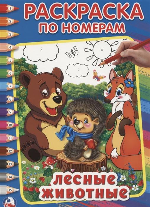 Хомякова К. (гл. ред.) Лесные животные Раскраска по номерам цена и фото