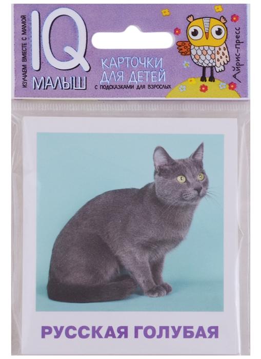 Муланова М. Породы кошек 17 карточек